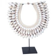 Neckless Papua shell on stand
